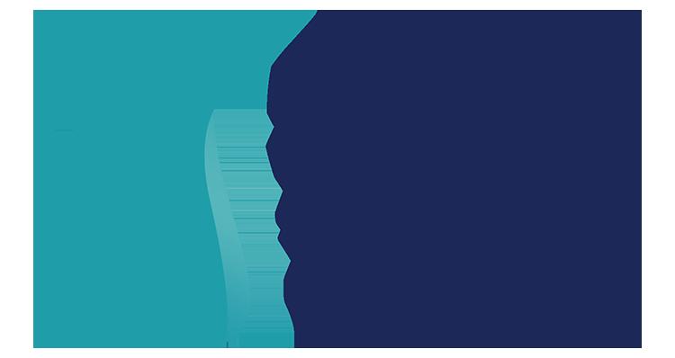 NVSO logotipas sviesiam fonui